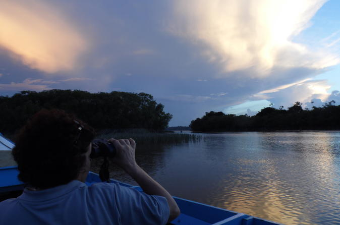 5 day guyana wildlife and nature eco tour in georgetown 304603
