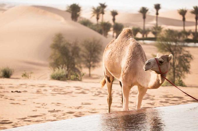 Live a day in Bedouin style - UAE Heritage Tour