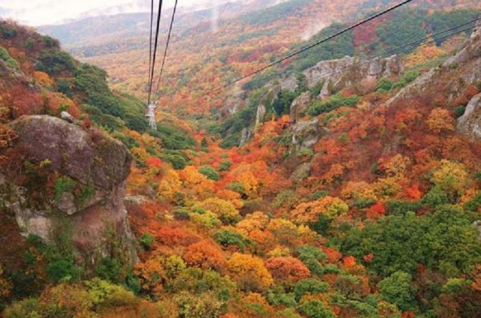 Autumn Leaves Experience in Shodoshima Island from Osaka including Kankakei Ropeway and Buffet Lunch Japan, Asia
