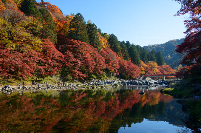 Autumn Leaves in Aichi Prefecture: Korankei & Obara Shikizakura From Osaka