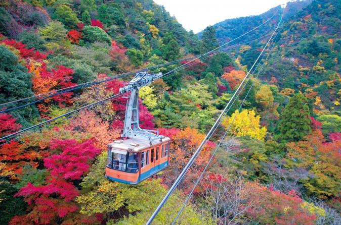 Autumn Leaves in Kobe: Cruise and Ropeway from Osaka