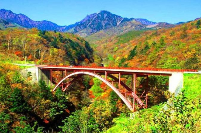 Autumn Leaves in Yamanashi: Higashizawa Ohashi Bridge & Yatsugatake Kogen Train