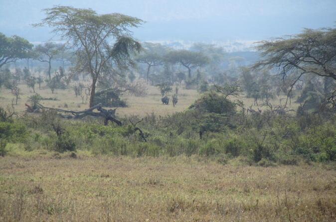 6-Day Tour - Shira Route Mount Kilimanjaro Trekking from Arusha
