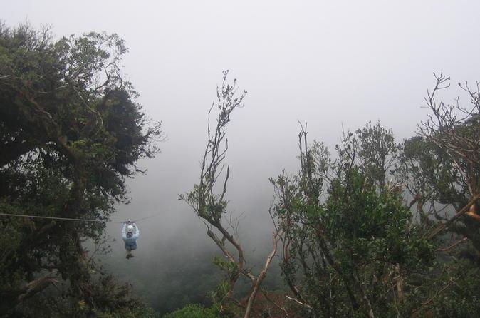 Zipline Hanging Bridges and Nature Exhibits Combo Tour in Monteverde Cloud Forest