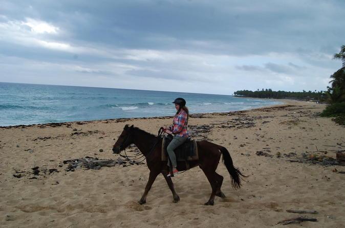 Punta Cana Horseback Riding on the Beach
