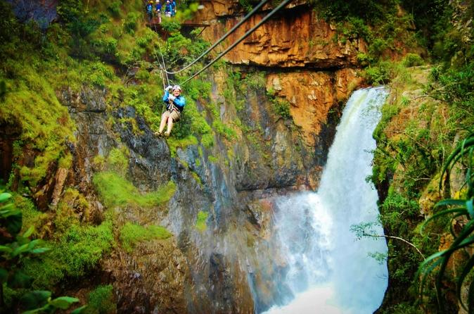 Full day zip line cheetahs and wine adventure tour from cape town in cape town 270954