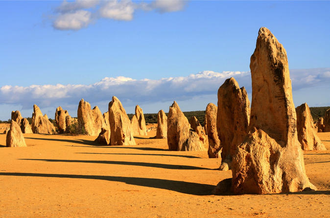 Pinnacles and Yanchep National Park Day Trip from Perth Including Lobster Shack Lunch and Sandboarding