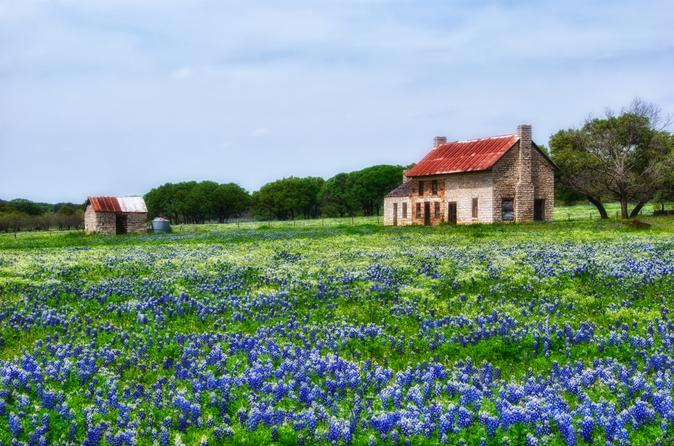 Texas Tours, Travel & Activities