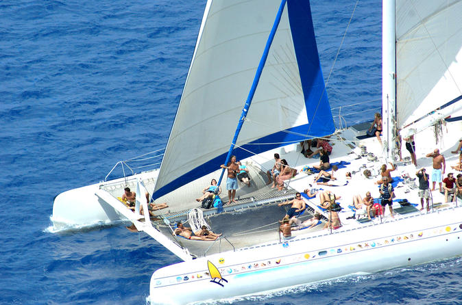 Saona Island Excursion by Catamaran and Speed Boat