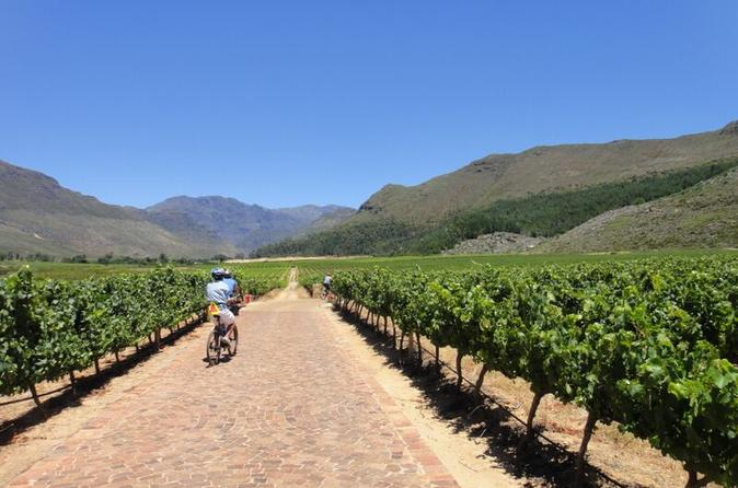 Franschhoek Vignerons Sip and Cycle Bike Tour from Cape Town