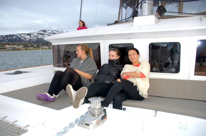 Fjord cruise with luxury catamaran in tromso 317028