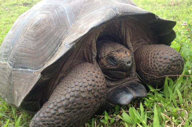 6-Day Galapagos Islands Highlights Tour