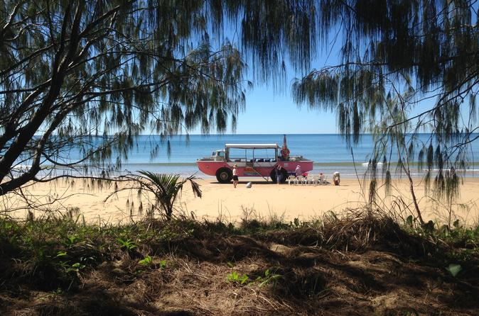 1770 coastline tour by larc amphibious vehicle including picnic lunch in agnes water 227565