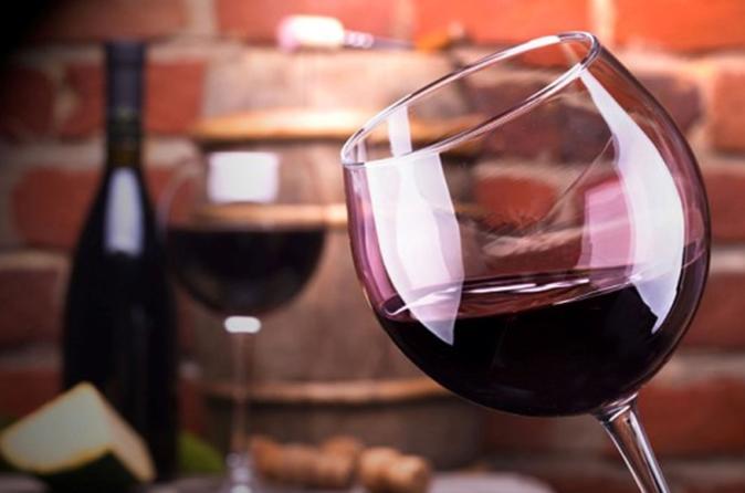 Malbec Wine Full-Day Tour to Mendoza