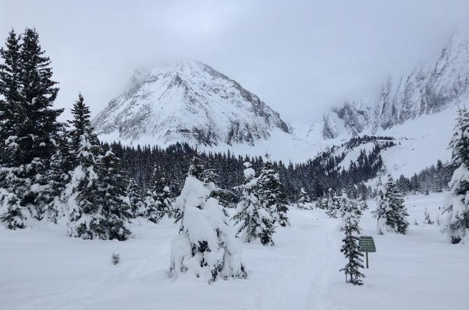 Kananaskis Country Snowshoe Tour