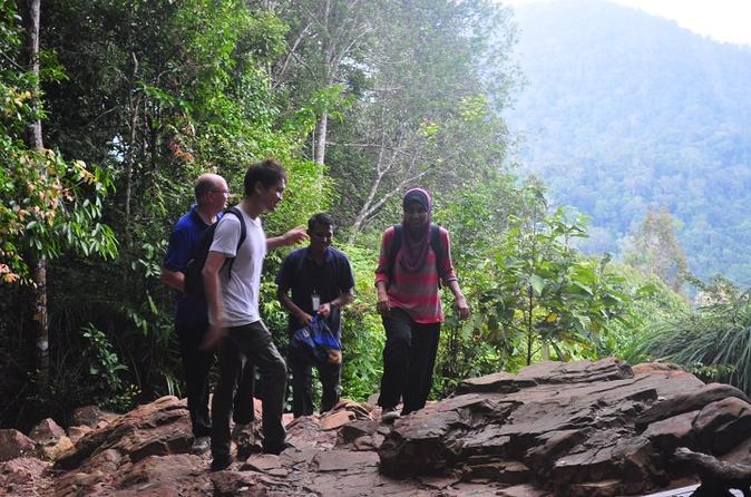 2 day taman negara national park adventure and kuala gandah elephant in kuala lumpur 234446