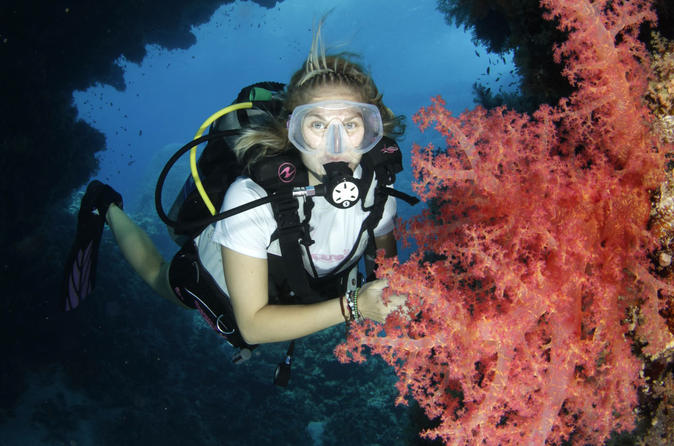 5 day dive pack for certified divers in marsa alam 243544