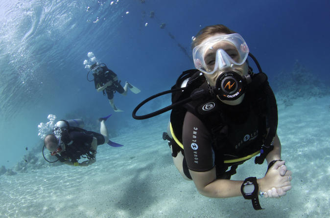 Day of scuba diving by boat for certified divers in marsa alam 227240