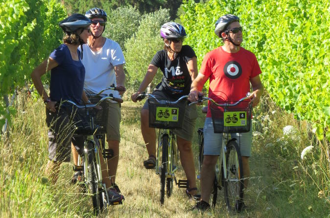Full day marlborough wine region bike hire in blenheim 229347