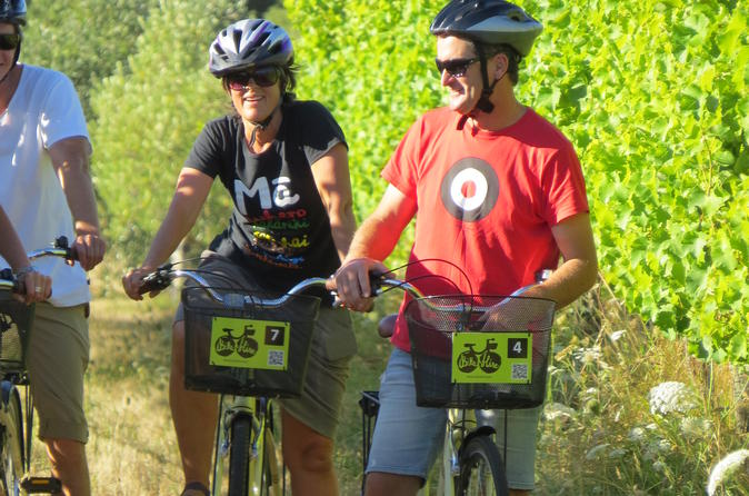 Half day marlborough wine region bike hire in blenheim 229333