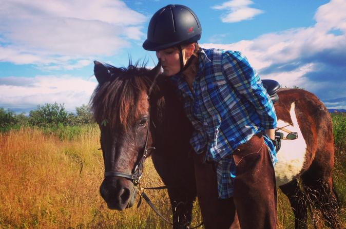 Private Horse Riding Tour on Úlfarsfell Mountain with Pickup from Reykjavik