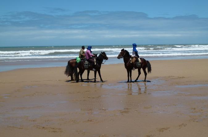 3 hours horse riding at Essaouira