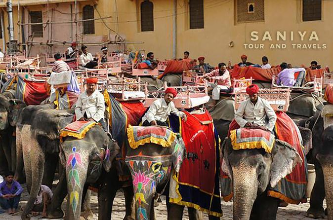 Jaipur City Tour of Amber Fort Sunrise To  Sunset