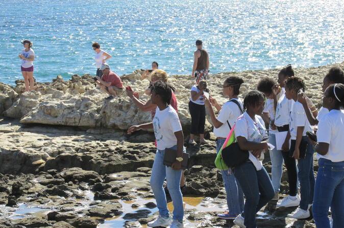 Antigua & Barbuda Cultural & Theme Tours