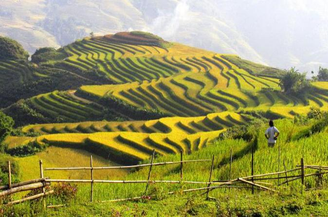 SAPA AUTHENTICK TREKKING & HOMESTAY TOUR - Hanoi