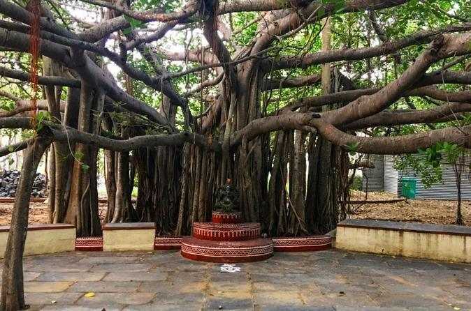 Kalakshetra, Theosophical Society and Elliots Beach - 'A trip to were nature meets with arts and historic significance in Chennai'