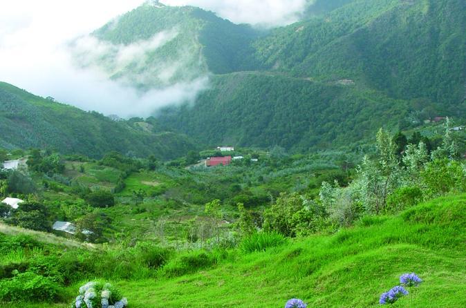 Meio dia excursão de jipe para o El Ávila National Park