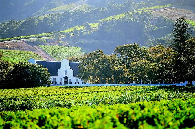 Private Constantia Wine Tour from Cape Town