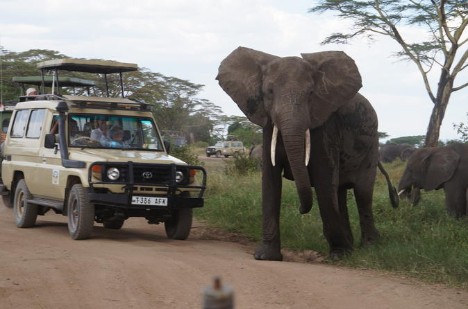 3 Days Serengeti And Ngorongoro Crater Safari From Mwanza Ending In Arusha
