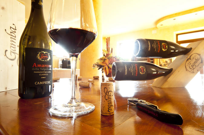Verona Private Guided Tour With Amarone Wine From MIlan