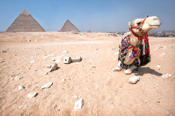 Cairo Sunset Safari Tour By Horse or Camel Ride Egypt, Africa