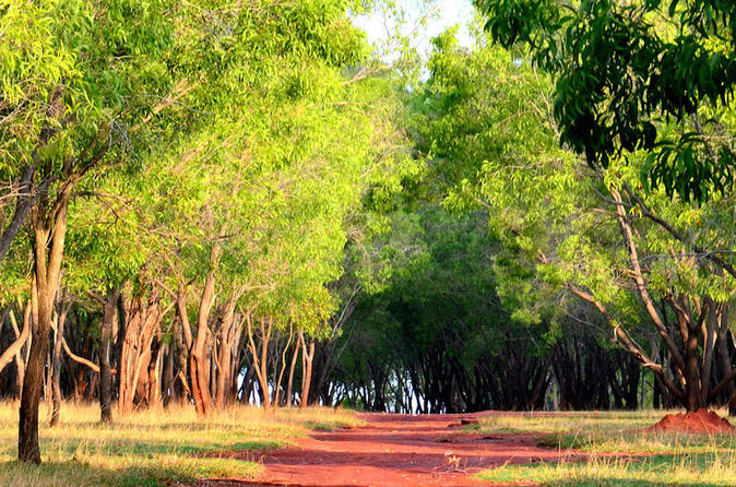 Countryside and dance trail in Bangalore
