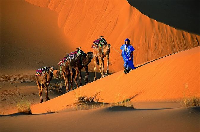 1 Night Camel Trek Bivouac From Merzouga