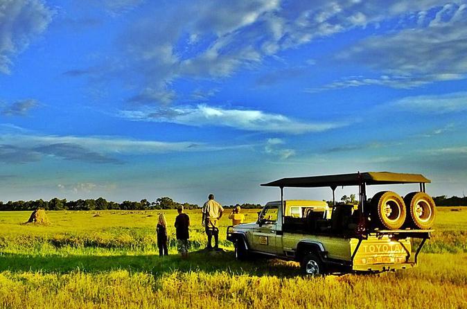 5 day botswana mobile camping safari to moremi and savuti from maun in maun 234093