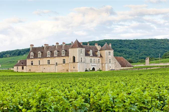 Small-Group Côte de Nuits Burgundy Wine Tour from Beaune