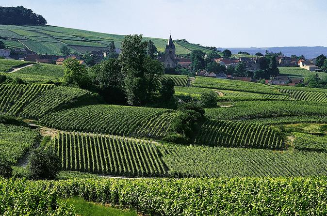 Small group day tour of epernay picturesque moet et chandon and in reims 262791