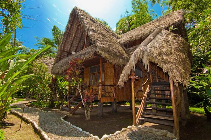 Amazon Experience 3 dagen in Cotococha Lodge