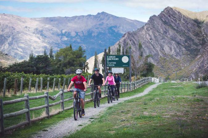Bike The Wineries Half Day Bike Tour from Queenstown