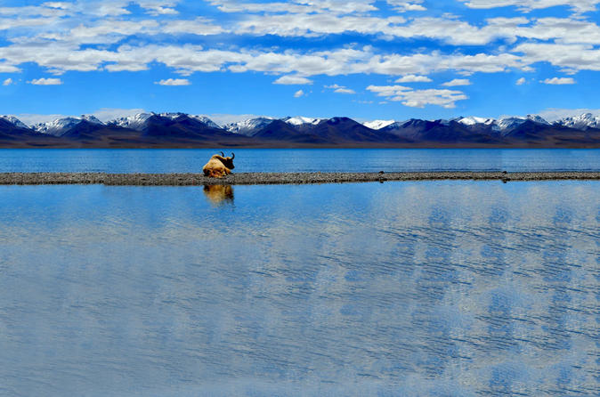 5 night lhasa and lake namtso fixed departure tour in tibet 424001