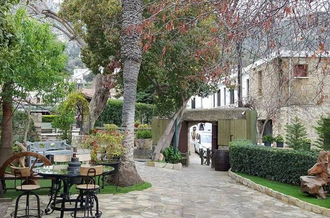 Small Group Tour of Nicosia and Kyrenia from Nicosia
