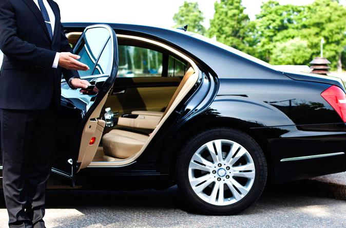 Private transfer from HBE airport to Alexandria Hotel