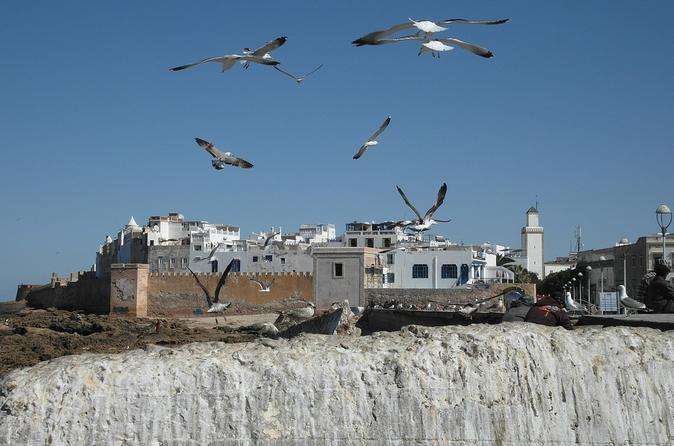 Day Trip To Essaouira Mogador From Marrakech