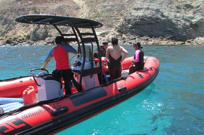 Scuba Diving Tour in the Coronado Islands