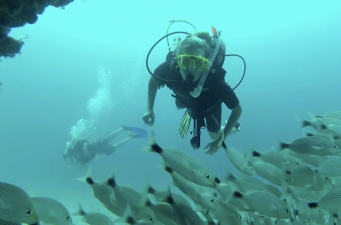 Marietas Islands National Park Certified Diving Trip