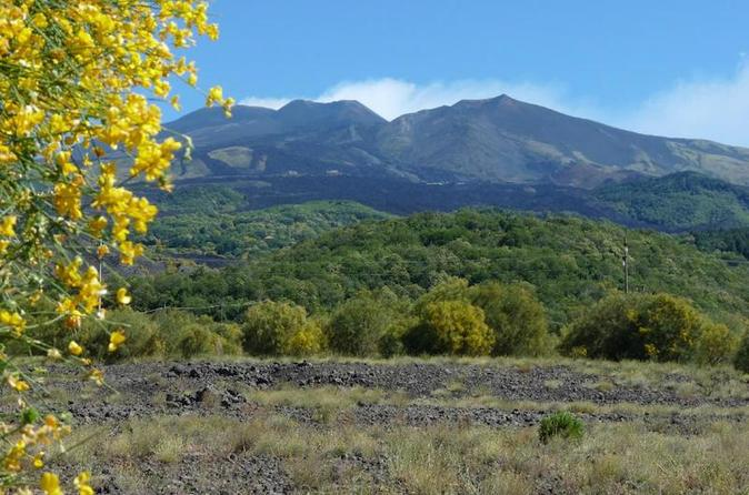 Etna Nature And Flavors Half-Day Tour