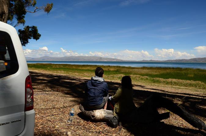 Viagem diurna a Tiwanaku e Titicaca saindo de La Paz